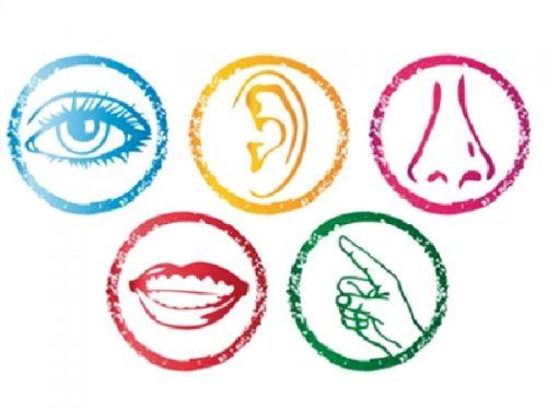 I disturbi della percezione sensoriale